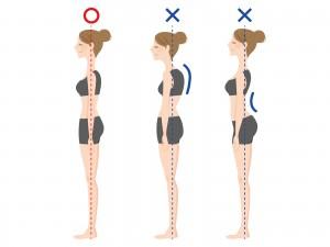 頭の位置に注目すると頭が前や後ろに出ると、背中や腰に負担大です